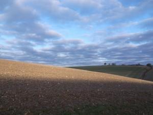 Breathtaking fields near Hannington