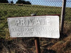 The Gallops, near Kingsclere