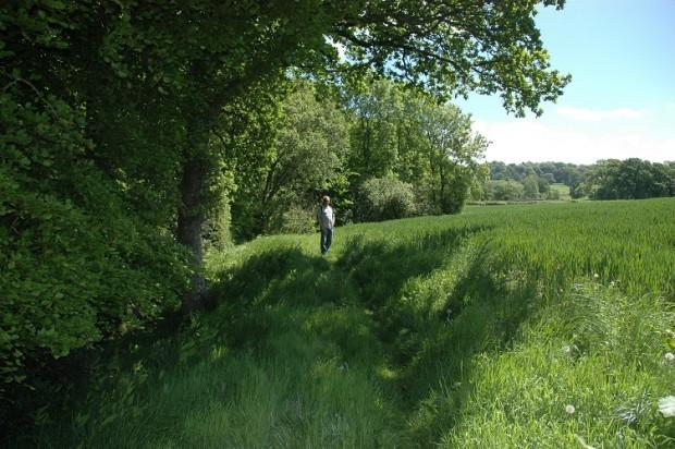 Steve following the River Parrett Trail to Wynyard's Gap Pub.
