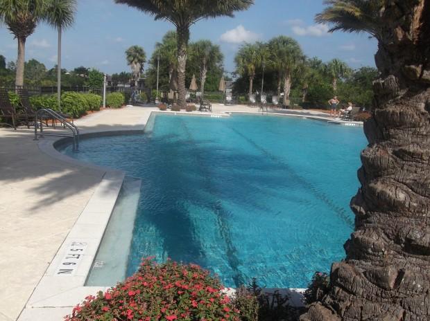 sandhill cranes and pool 012 - Copy