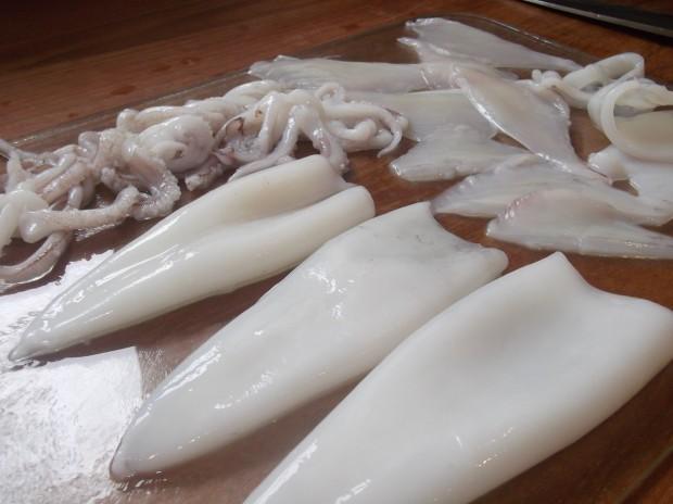 squid 025 - Copy