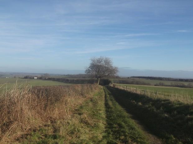 ibberton walk 006 - Copy