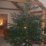 christmas tree 2013 006 - Copy